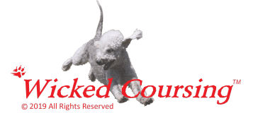 Wicked Coursing