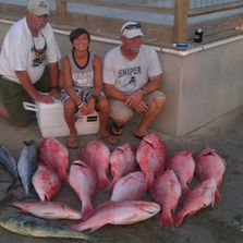 Red Snapper Gulf of Mexico