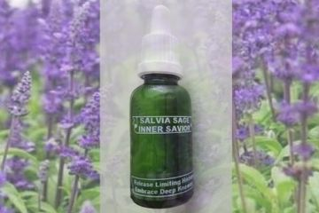 Release your past flower essence