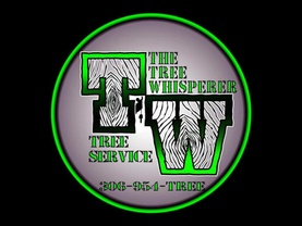 The Tree Whisperer