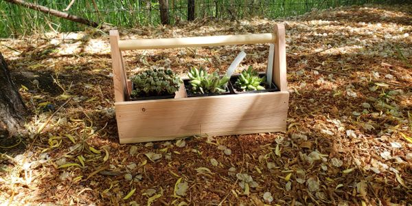 Toolbox planter with succulents