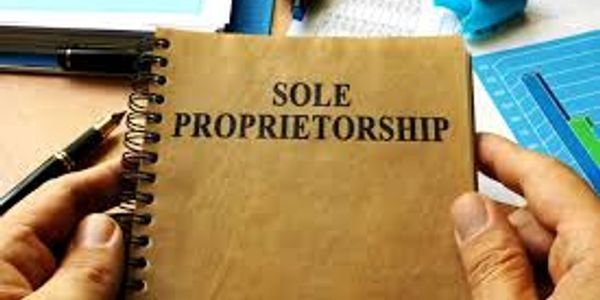 Sole Proprietorship, Sole Proprietor