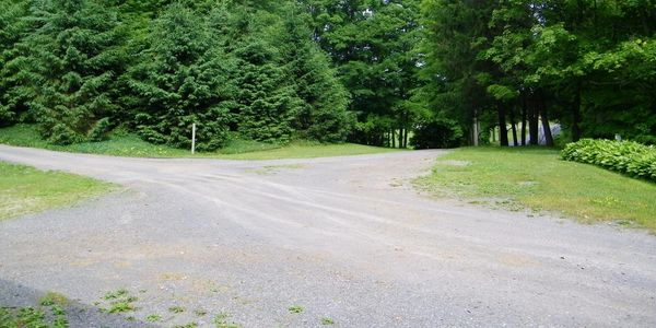 Picture shows large driveway parking lot with plenty of trees in background