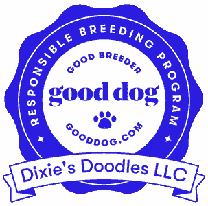 Dixie's Doodles is recognized as having a responsible breeding program by Good Dog!