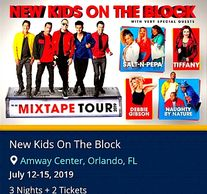 New Kids on the Block concert. Troy Weaver