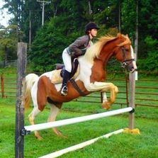 """A Dream to Ride Can Come True"" We offer riding instruction in both English and Western disciplines"