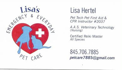 Lisa Hertel RMP specializes in Animal Reiki. She offers treatments in the Capital Region