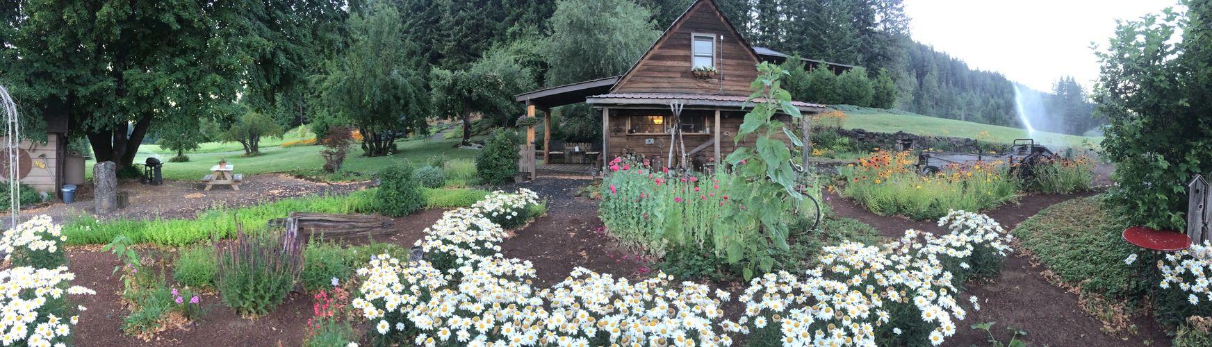 Trout Lake Cabin Rental - Lodging, Lodging, Vacation Rental
