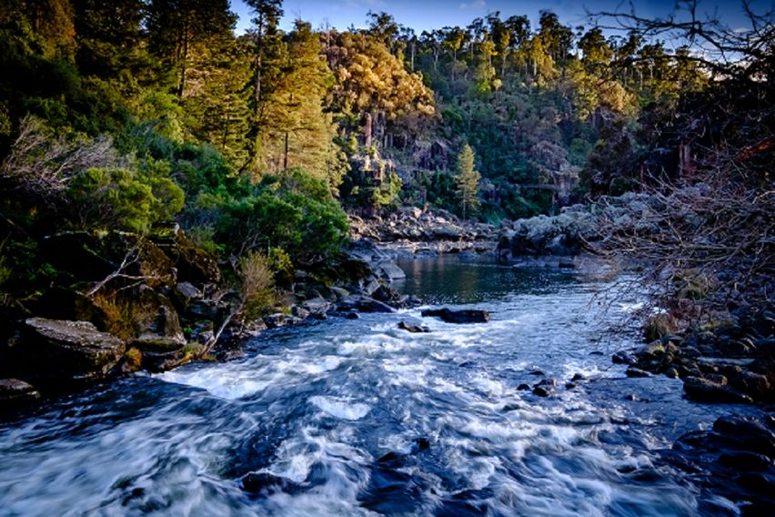 Walk over the rapids in the Cataract Gorge Launceston