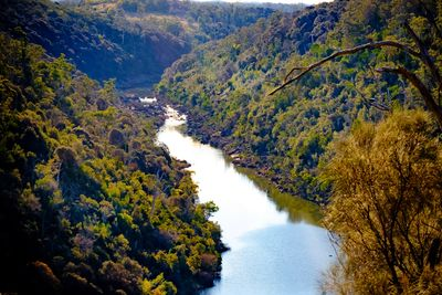 Walk to this magnificent view - Cataract Gorge, Launceston