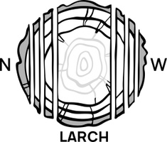 Siberian larch products