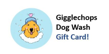 Self service dog wash in magnolia gigglechops dog wash the perfect gift for somebody who owns a dog and wants to use a self service dog wash solutioingenieria Choice Image