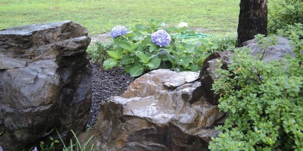Rocks and flowers at ABear's Den.