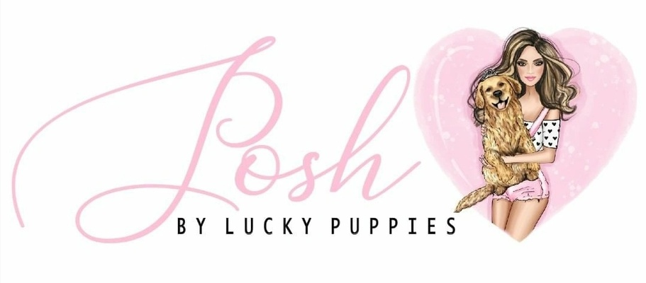 Posh The Lucky Puppies