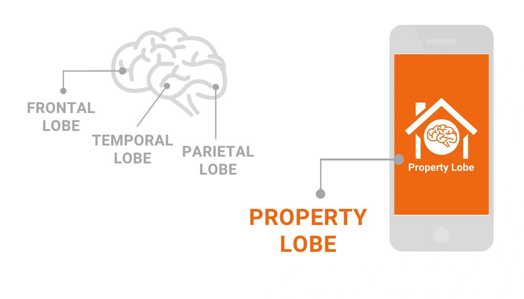 Property Lobe logo inside the vector image of a phone
