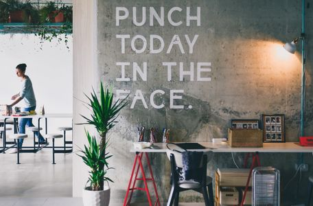 Sign saying Punch Today in the Face with a green plant next to it. Photo by Johnson Wang on Unsplash