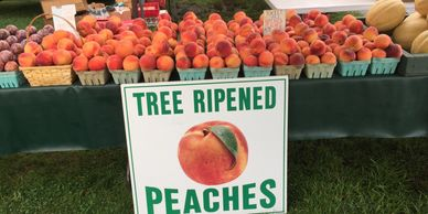 Tree ripened peaches.
