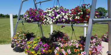Hanging baskets look great on a front porch and make great gifts for Mothers' Day.
