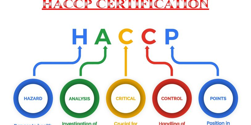 What is HACCP & why you need it?