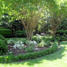 Sussex County Delaware landscape design featuring crape myrtle trees, liriope, and perennial flowers