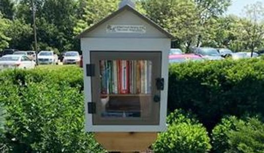 Little Free Library box full of books at the edge of the Morning Star parking lot.