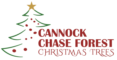 Cannock Chase FOREST Christmas Trees