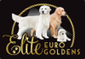 ELITE EURO GOLDENS