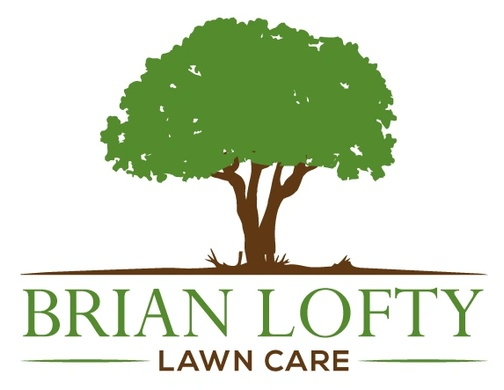 Brian Lofty Construction & Lawn Care