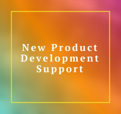 New product Development Support New Idea