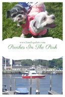 Pooches In The Park, dogs parks in lewes, de, activities in lewes,de, dogs at lewes beach, lewes fun