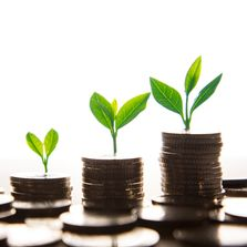 Grow investment. Start to invest. Best savings accounts. Barefoot Investor. Financial advice.