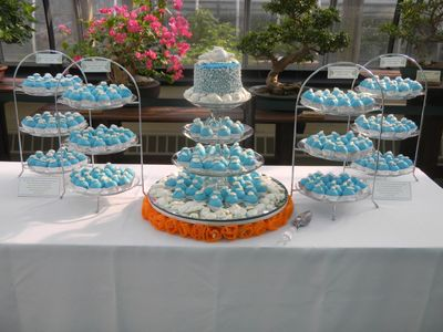 party cakes, blue and white cake, Patricia Schibi, dessert tray