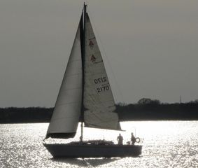 1981 Catalina 30 for sale best used sailboat
