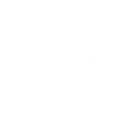 ROOTED craft American kitchen
