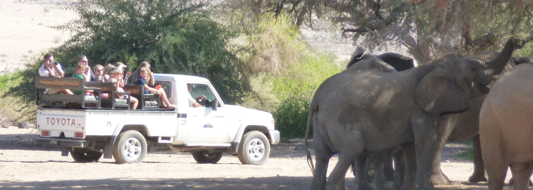 Safari Deal Robin Cormack World Adventure Africa The Travelers Blueprint Big Five Animals Gorillas