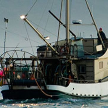 American Scale offers the commercial fishing industry durable products