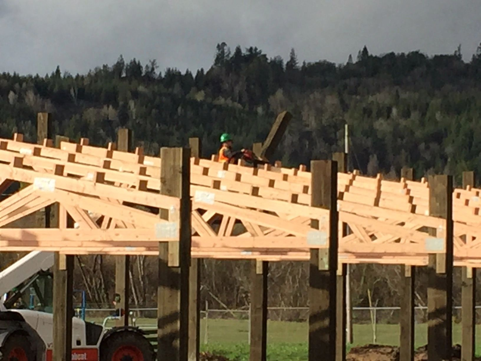 February 2019: Trusses Going Up