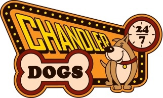 Chandler Dogs 24/7