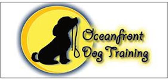 Oceanfront Dog Training