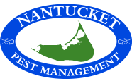 Nantucket Pest Management