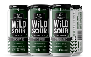 An image of DESTIHL Brewery's Wild Sour Series beer cans in a retail pack.
