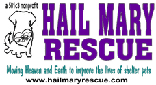 Hail Mary Rescue