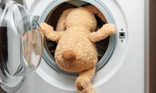 teddy bear climbing into Front load washing machine