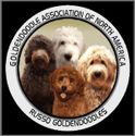 Russo's Goldendoodle's