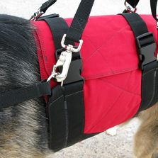 Support Suits wrap around a dogs torso, providing sturdy lift & support for helping a dog on stairs