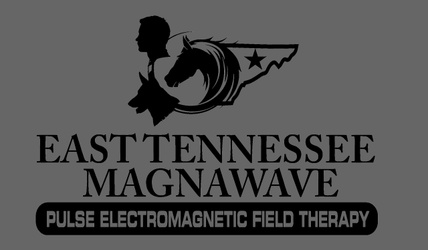 East Tennessee MagnaWave