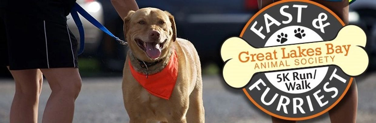 Great Lakes Bay Animal Society Fast & Furriest 5K - April 25, 2020