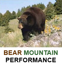 Bear Mountain Performance