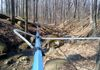 maple sap tubing main line and extensions