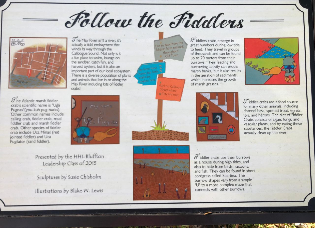 Story of fiddler crabs in the historic Low Country town of Bluffton, South Carolina, between Hilton Head and Savannah.